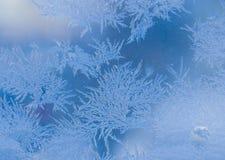 ilustracyjnych wzorów wektorowa nadokienna zima Zdjęcia Stock