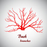 Ilustrador del vector de las ramas del arbusto Fotografía de archivo libre de regalías