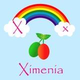 Ilustrador do alfabeto de X Foto de Stock
