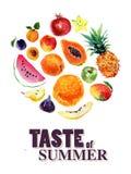 Ilustração da aquarela de frutos coloridos brilhantes frescos Foto de Stock