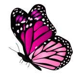 Ilustração de uma borboleta colorida Fotografia de Stock Royalty Free