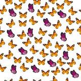 Ilustração de uma borboleta colorida Imagens de Stock Royalty Free