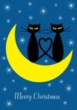 Ilustração do Feliz Natal com dois gatos Foto de Stock Royalty Free