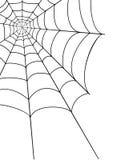 Ilustração do vetor do estoque da Web de aranha Foto de Stock