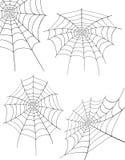 Ilustração do vetor do estoque da Web de aranha Imagens de Stock Royalty Free