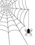 Ilustração do vetor do estoque da Web de aranha Imagem de Stock Royalty Free