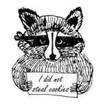 Ilustração engraçada do esboço do ladrão do guaxinim da imagem dos desenhos animados Foto de Stock Royalty Free