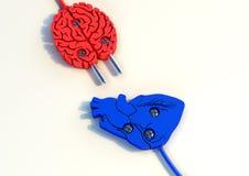 Ilustration штепсельной вилки мозга и сердца Иллюстрация вектора