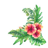 Ilustration of a bouquet with yellow-pink hibiscus flowers and tropical plants. Royalty Free Stock Photography