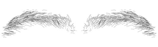 Ilustration of eyebrow royalty free stock photos
