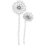 ilustrujący śliczni kwiaty Obraz Royalty Free