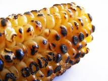 Imágenes asadas a la parilla del maíz de la leche para su logotipo y diseños 1 Imagenes de archivo