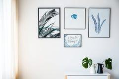 Imágenes con adorno de las plantas Imagen de archivo libre de regalías