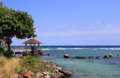 Imágenes de la forma de vida del centro turístico y del balneario de la bahía de Westin Turtal en Mauricio Imágenes de archivo libres de regalías