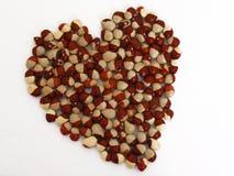 Imágenes de la haba de riñón roja para empaquetar Imagen de archivo