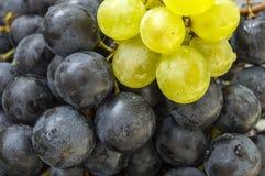 Imágenes de uvas negras en imágenes de madera en la placa, las grandes uvas negras del piso, negras y verdes de las uvas Imagen de archivo libre de regalías
