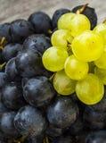 Imágenes de uvas negras en imágenes de madera en la placa, las grandes uvas negras del piso, negras y verdes de las uvas Fotos de archivo libres de regalías