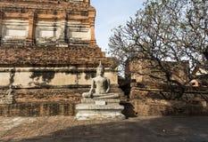 Imágenes de Wat Yai Chaimongkol Buddha Fotografía de archivo