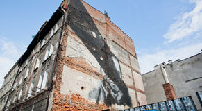Imágenes del arte de la calle en los frentes de los edificios modernos Imágenes de archivo libres de regalías