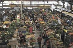 Imágenes del Brasil La gente y las tierras brasileñas imagen de archivo libre de regalías