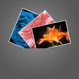 Imágenes del día de fiesta imagen de archivo libre de regalías