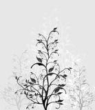 Imágenes del esquema del árbol Fotos de archivo libres de regalías