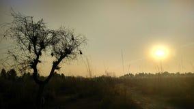 Imágenes del tiempo de la tarde con el sistema del sol Imagenes de archivo