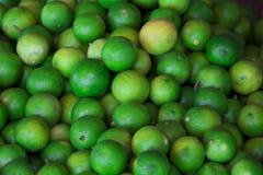 Imágenes del verde lima, limón, amargo Fotografía de archivo libre de regalías