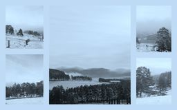 Imágenes hermosas del invierno de la montaña Zlatibor Imagen de archivo