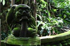 Im Affe-Wald von Bali Stockfotos