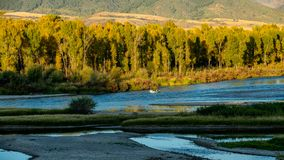 Im Fall mit Herbst färbte Bäume ein Antriebboot im Snake River stockfoto