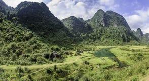 Ein ländlicher Fluss in Vietnam 2 lizenzfreie stockbilder