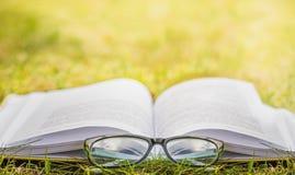 Im Freien lesen Erholungslesung im Freien ein Buch stockbild