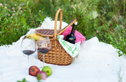 Im Freienpicknickeinstellung mit Rotwein stockfotos