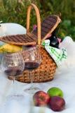 Im Freienpicknickeinstellung mit Rotwein stockbilder