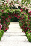 Im Garten Lizenzfreie Stockbilder