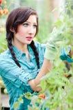 Im Garten arbeitenfrau Lizenzfreie Stockbilder