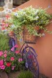 Im Garten arbeitenhintergrund Lizenzfreies Stockfoto