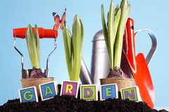 Im Garten arbeitenkonzept! Lizenzfreie Stockbilder