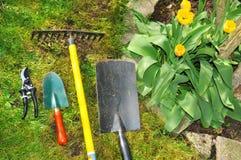 Im Garten arbeitenkonzept Lizenzfreie Stockfotos