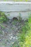 Im Garten kein Wasser im Abzugsgraben, Dürre Stockbild