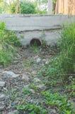 Im Garten kein Wasser im Abzugsgraben, Dürre Stockfotografie