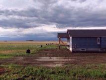 Im Grasland stockfotografie