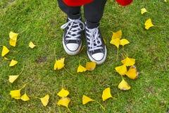 Im Herbst Die Küken wuchsen auf und verließen das Nest Lizenzfreie Stockbilder