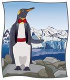 Im Norden Pinguin stock abbildung