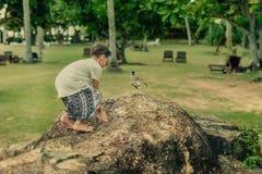 Im Park ein Junge und ein Vogel Lizenzfreie Stockfotografie