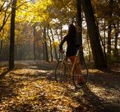 Im Park mit dem Fahrrad Stockbild