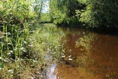 Im ruhigsten Wasser Lizenzfreie Stockfotografie