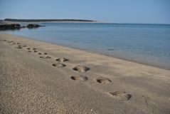 Im Sand Stockfoto
