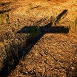 Im Schatten der Rettung Stockbild